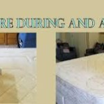 Mattress Cleaning Oak Park