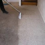 Carpet Cleaning Specialists Gentle Annie