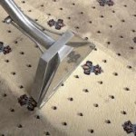 Rug Cleaning Eltham 3095