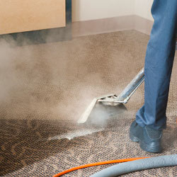 Carpet Cleaning Specialists Caveat