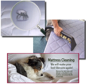 Home Mattress Cleaning