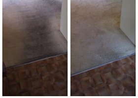 Carpet Flood Damage Repair
