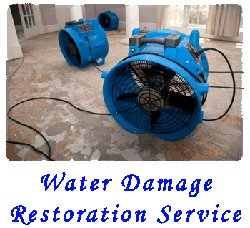 Water Damage Extraction McKinnon