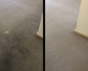 Carpet Cleaning After - Before