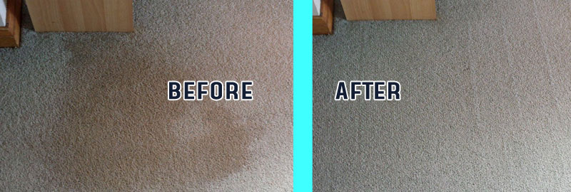 Professional Carpet Cleaning Bonshaw