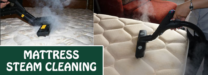 Mattress Steam Cleaning Reservoir