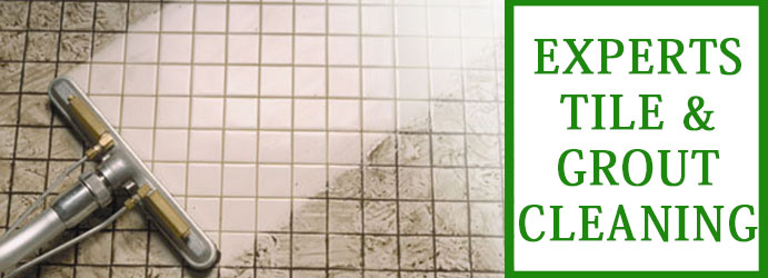 Tile and Grout Cleaning Buckley