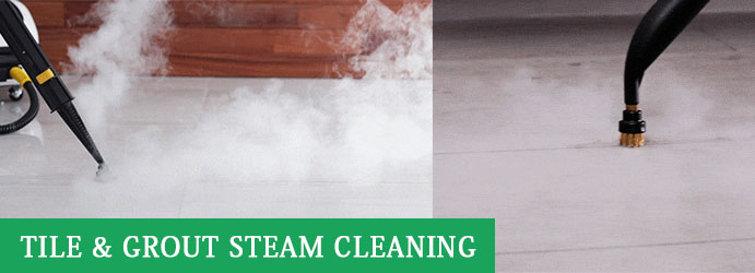 Tile and Grout Steam Cleaning Officer