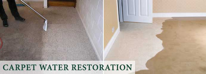 Carpet Water Restoration McKinnon