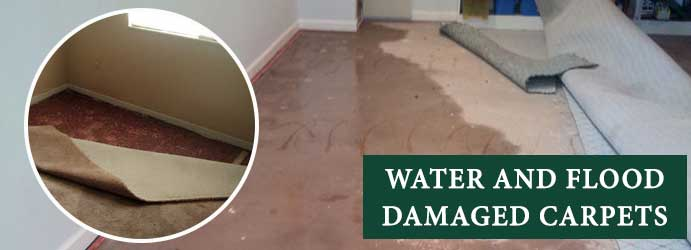 Water and Flood Damaged Carpets Fitzroy Airport