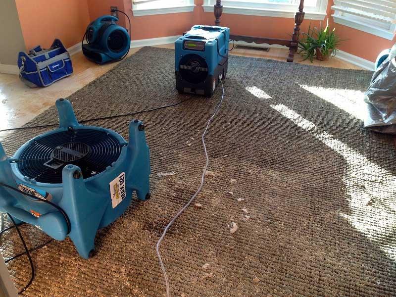 Carpet Water Damage Clean Up Carpet Vidalondon