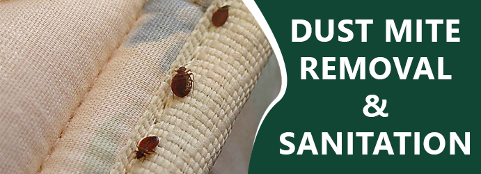 Dust Mite Removal and Sanitation Sulky