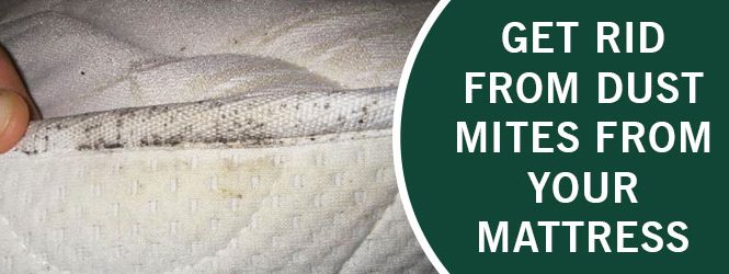 Get Rid from Dust Mites From Your Mattress