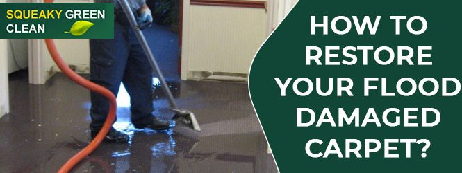 Carpet Water Damage