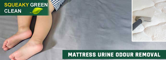 Mattress Urine Odour Removal